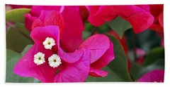 Hot Pink Bougainvillea Hand Towel