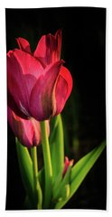 Hot Pink Tulip On Black Bath Towel