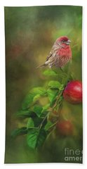 House Finch On Apple Branch Bath Towel by Janette Boyd