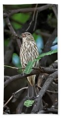 Hand Towel featuring the photograph House Finch V44 by Mark Myhaver