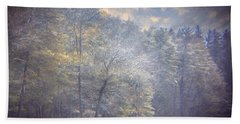 Howe State Park In Winter Hand Towel