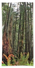 Humboldt Redwoods Bath Towel