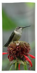 Humming Bird Atop Bee Balm Bath Towel