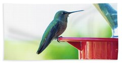Hummingbird At The Feeder Bath Towel by Kimo Fernandez