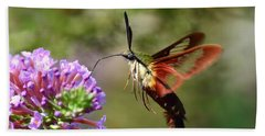 Hummingbird Clearwing Moth Bath Towel