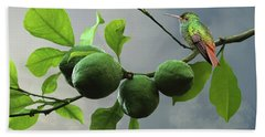 Hummingbird In Lime Tree Hand Towel