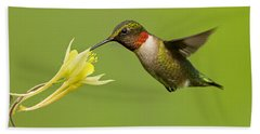 Hummingbird Hand Towel by Mircea Costina Photography