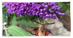 Hummingbird Moth Hand Towel