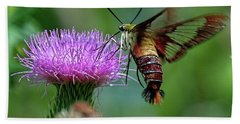 Hummingbirdbird Moth Dining Bath Towel