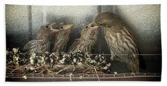 Hand Towel featuring the photograph Hungry Chicks by Alan Toepfer