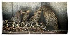 Hungry Chicks Bath Towel by Alan Toepfer
