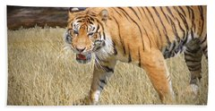 Hand Towel featuring the painting Hungry Tiger by Judy Kay