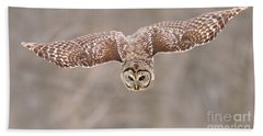 Hunting Barred Owl  Bath Towel by Mircea Costina Photography
