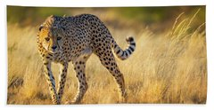 Hunting Cheetah Hand Towel by Inge Johnsson