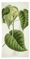 Hura Botanical Print Bath Towel