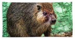 Hutia, Tree Rat Hand Towel