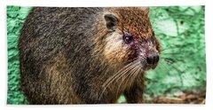 Hutia, Tree Rat Bath Towel