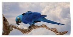 Hand Towel featuring the photograph Hyacinth Macaw by Wade Aiken