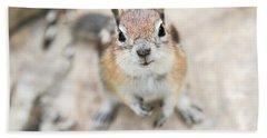 Hypno Squirrel Bath Towel