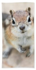 Hypno Squirrel Bath Towel by Chris Scroggins