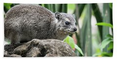 Hyrax Bath Towel