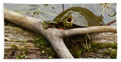 Hand Towel featuring the photograph I Am Turtle, Hear Me Roar by Sean Griffin