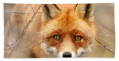 I See You - Red Fox Spotting Me Hand Towel
