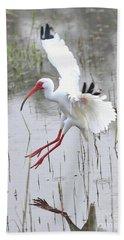Ibis Soft Water Landing Hand Towel by Carol Groenen