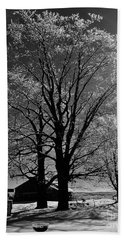 Ice Tree Hand Towel by Diane E Berry