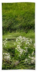 Hand Towel featuring the photograph Icelandic Daisies by KG Thienemann
