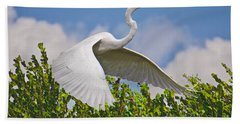 In Flight Hand Towel by Judy Kay