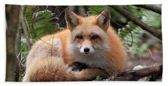In Hiding Red Fox Hand Towel