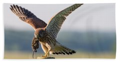 In The Kestrel's Beak Hand Towel by Torbjorn Swenelius