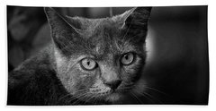 In The Know Pet Art Bw Bath Towel