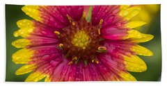 Indian Blanket Hand Towel