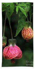 Indian Mallow Hand Towel