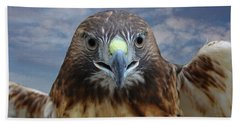 Inflight Frontal Red Tailed Hawk Bath Towel