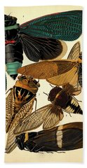 Insects, Plate-1 Hand Towel