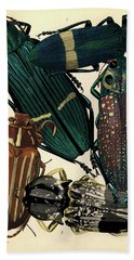 Insects, Plate-13 Hand Towel