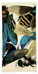 Insects, Plate-5 Hand Towel