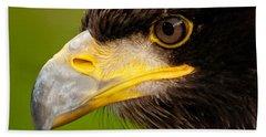 Intense Gaze Of A Golden Eagle Hand Towel
