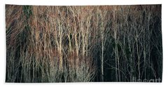 Into The Forest  Hand Towel by Christy Ricafrente