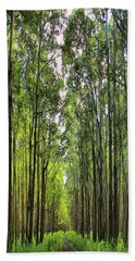 Hand Towel featuring the photograph Into The Forest I Go by DJ Florek