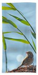 Ipswich Sparrow Hand Towel
