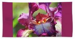 Iris Butterfly Hand Towel by Brooks Garten Hauschild