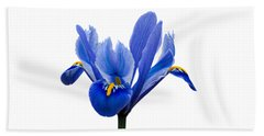 Iris Recticulata Transparent Background Bath Towel by Paul Gulliver