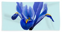Bath Towel featuring the photograph Iris Reticulata Blue Background by Paul Gulliver
