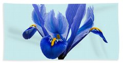 Hand Towel featuring the photograph Iris Reticulata Blue Background by Paul Gulliver