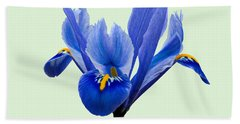 Bath Towel featuring the photograph Iris Reticulata, Green Background by Paul Gulliver