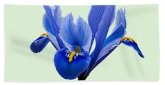 Hand Towel featuring the photograph Iris Reticulata, Green Background by Paul Gulliver